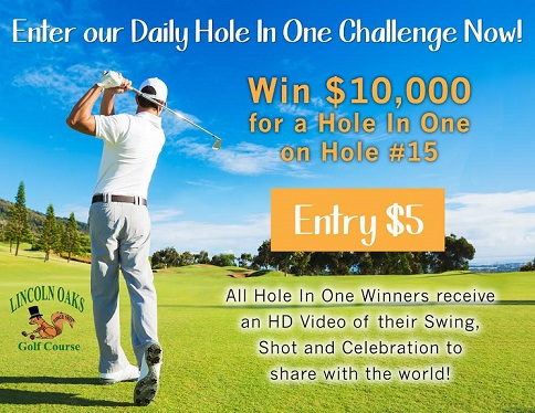 hole in one flyer resized